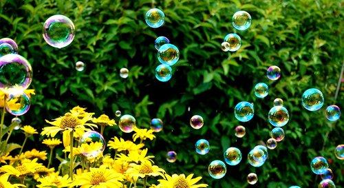 soap bubbles  colorful  summer