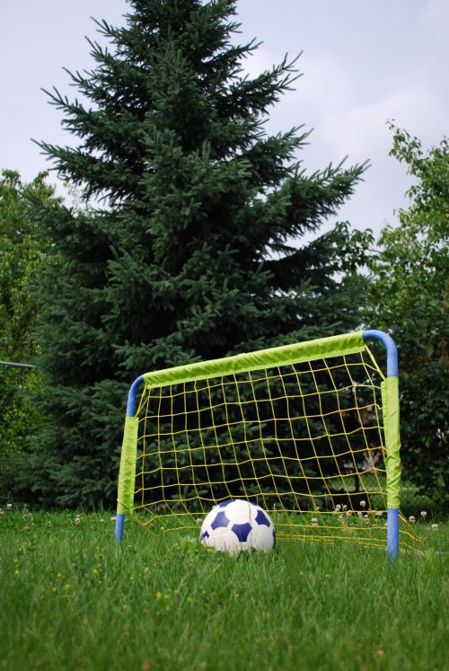 Soccerball And Net