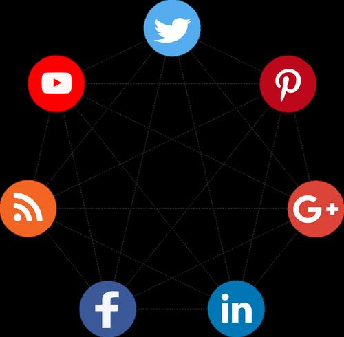social  net  video