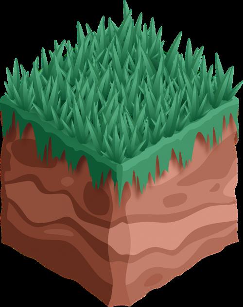 sod earth grass