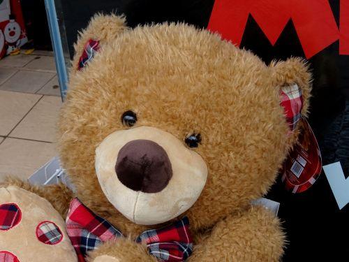 Soft Cuddly Teddy Bear