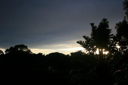 Soft Light On The Horizon