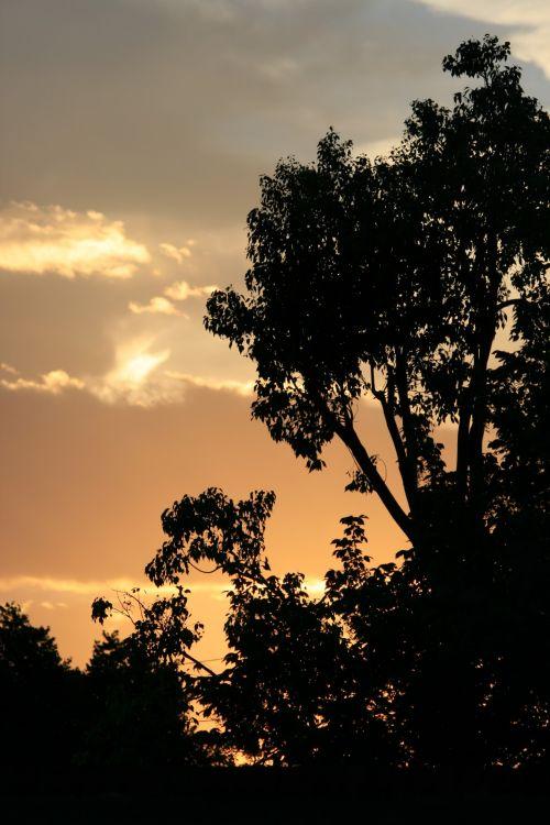 Soft Pastel Sunset