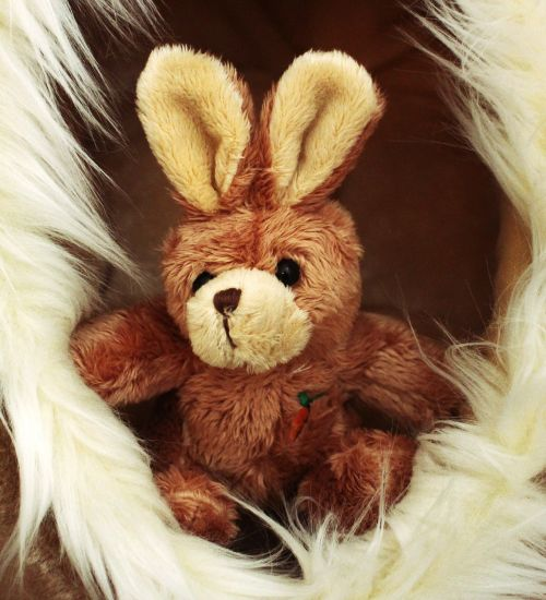 soft toy hare stuffed animal