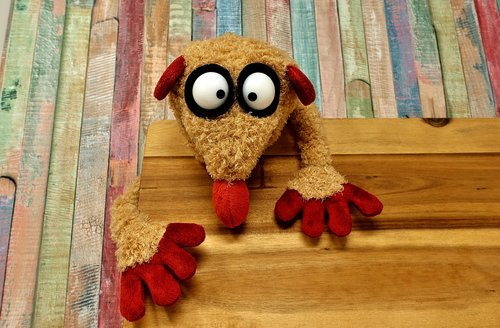 soft toy  stuffed animal  funny