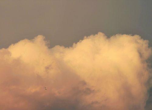 Softly Tinged Pink Cloud