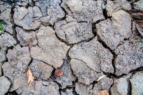 soil rift cracked