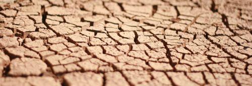 soil cracked earth dry land