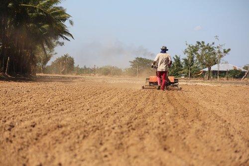 soil  farm  agriculture