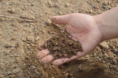 soil hand farm