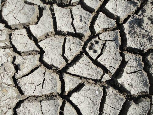 soil mud cracks