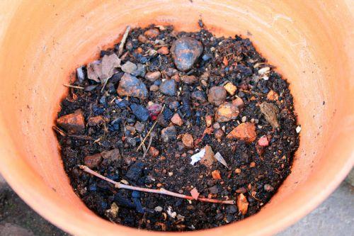 Soil In Pot