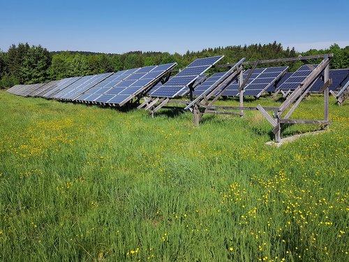 solar field  meadow  energy