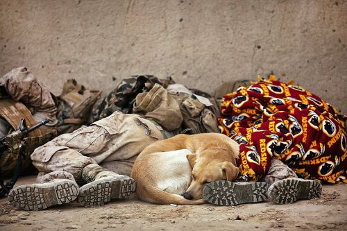 soldiers resting military sleeping