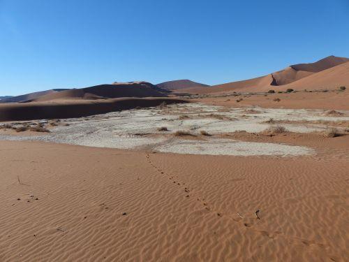 sossusvlei desert namibia