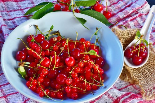 sour cherries  cherries  currants