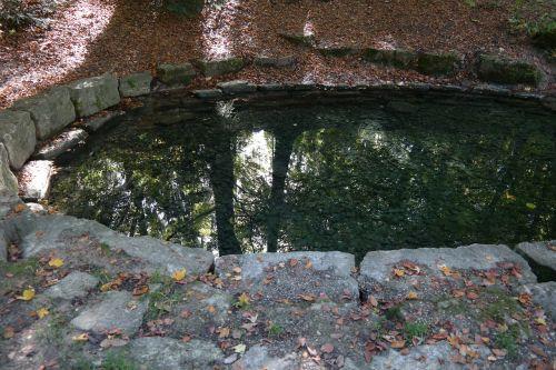 šaltinis,upė,vanduo,Laupheimas,schlossgarten,veidrodis,pilies parkas,parkas