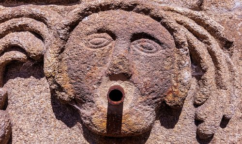 source  face  cano