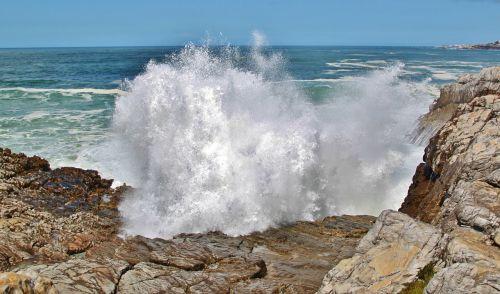 south africa coast wave