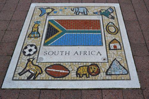 south africa sport team emblem