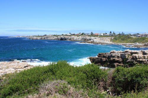 south africa coast of hermanus nature