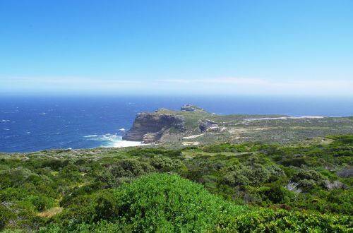 south africa table mountain reserve cape point