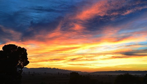 south africa  dawn  sky