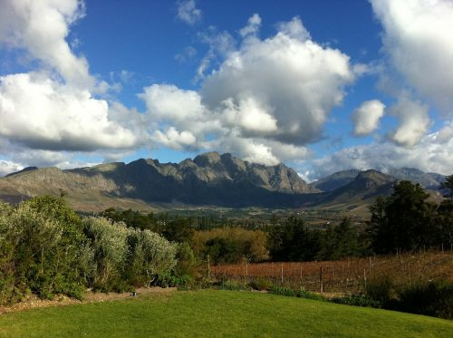 south africa vineyards mountain