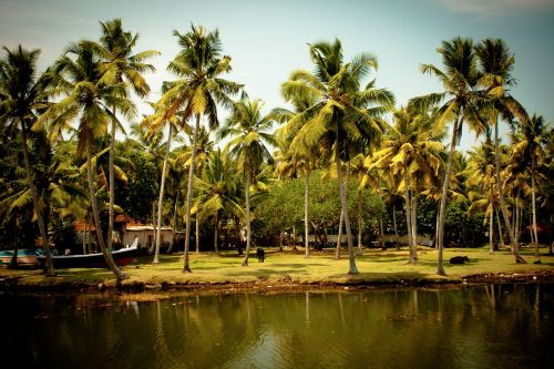 south india backwaters india
