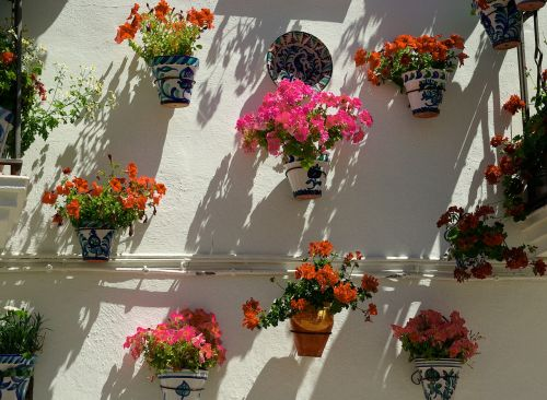 spain andalusia floral walls