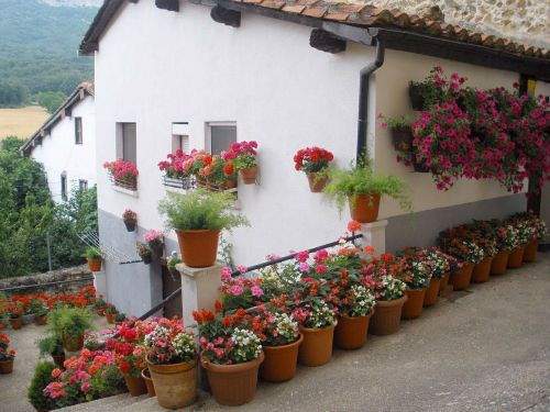 Ispanija,namas,namai,gėlės,puodai,puodai,gamta,lauke,miškas,medžiai,miškai,architektūra,terasa,Šalis,kaimas,kaimas,vasara