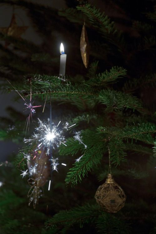 sparklers christmas tree candles