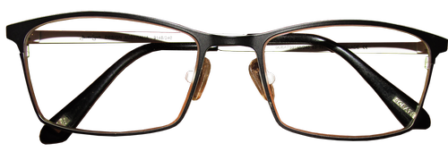 spectacles  eyeglasses  vision