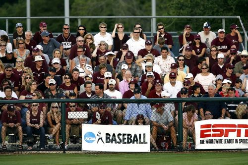 spectators sports fans crowd