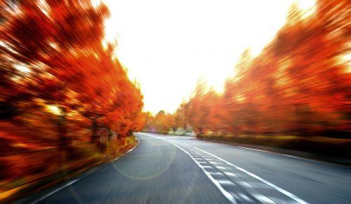 greitis,kraštovaizdis,ruduo