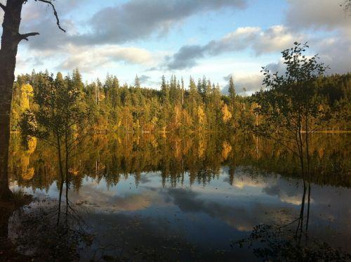 spegelsjö landscapes autumn