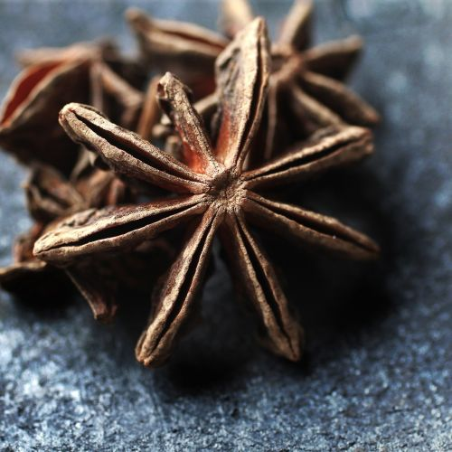 spice,spices,mat,kitchen,anise,star anise,sauce