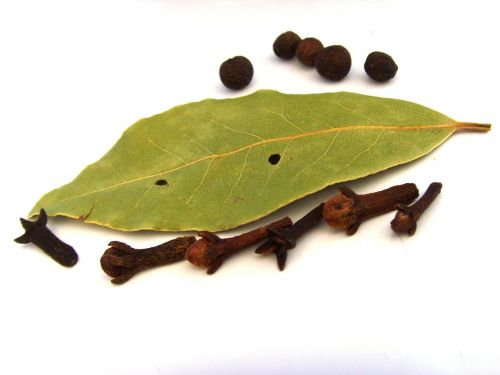 spices cloves laurels