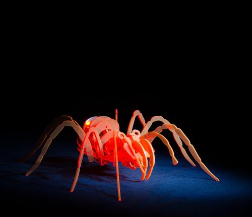 spider acrylic light painting