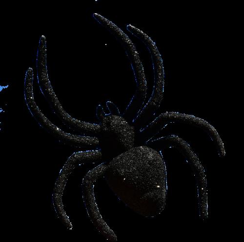 spider halloween accessories
