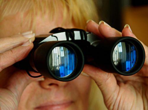 spinage binoculars look