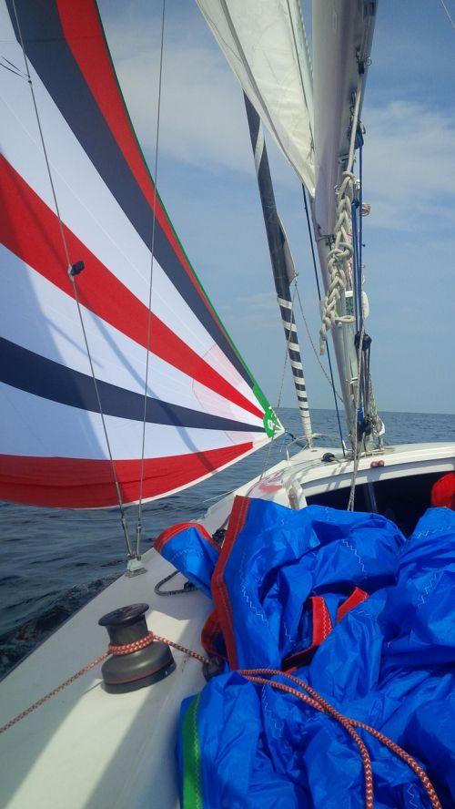spinnaker sailing boat