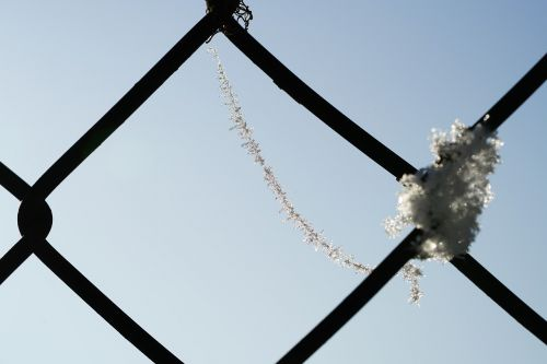 spinnwebfaden hoarfrost eiskristalle