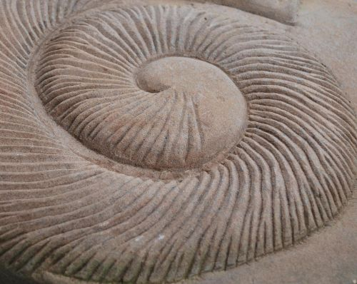 spiral garden pierre