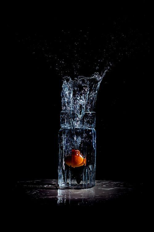 splash water splash tomato in water