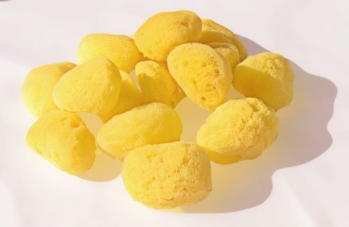 sponge sea natural