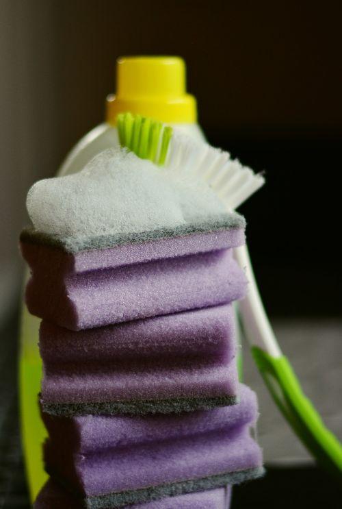 sponge cleaning sponge clean