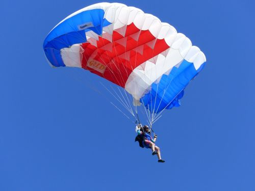 sport skydiving competition