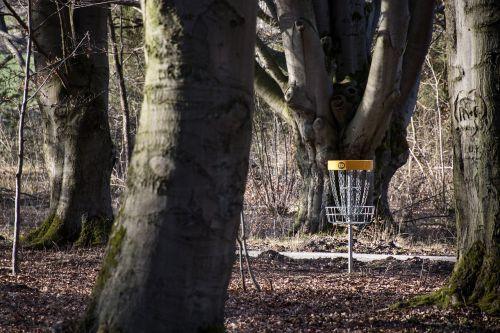 sport disc golf frisbee