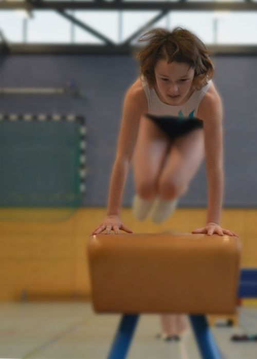 sport gymnastics gym
